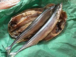ふるさと納税 静岡県下田市 魚とイカの干物セット
