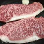 ふるさと納税 佐賀県嬉野市 佐賀牛 ステーキ肉450g(2枚)